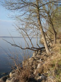 Lake Monona is nearby