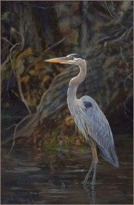 Blue-Heron-600