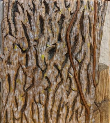 Oak.1
